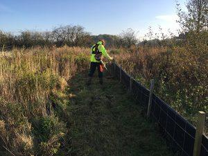 amphibian fence maintenance