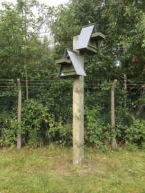 barn owl boxes pole mounted