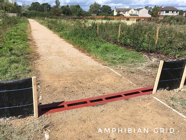 amphibian grid aka newt grid
