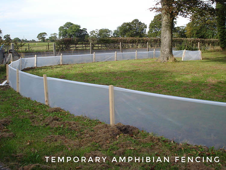 Temporary amphibian fencing