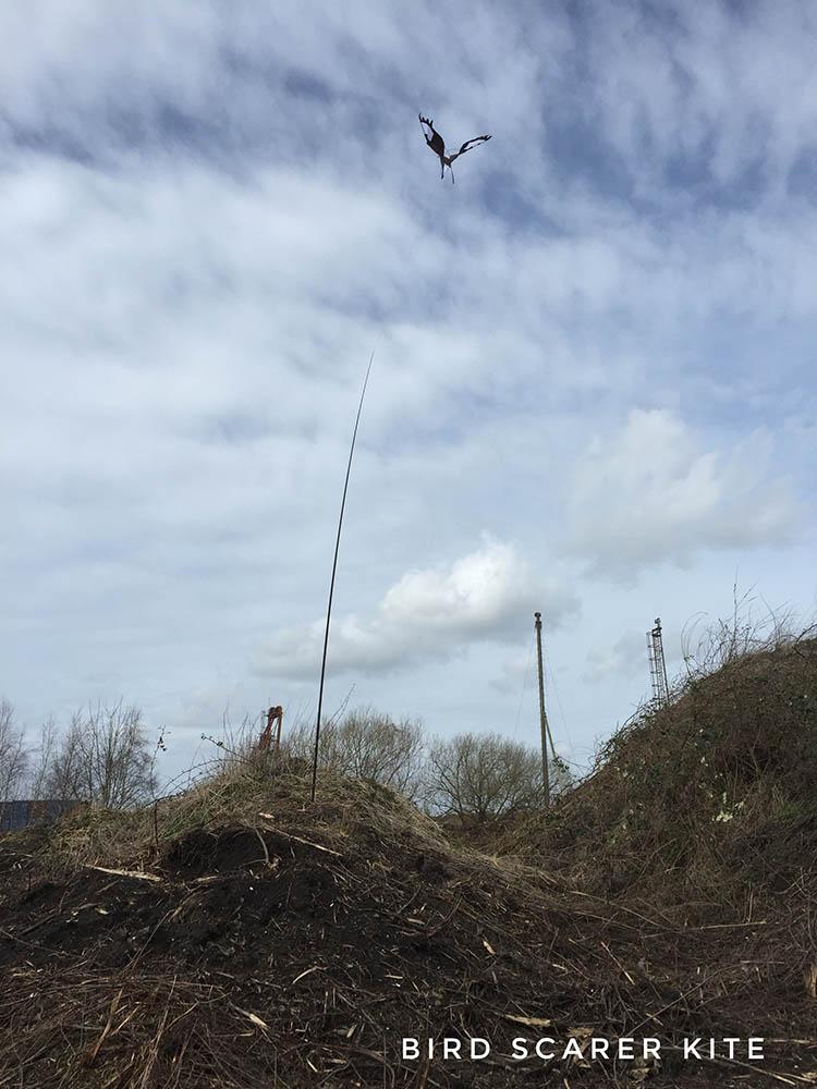 Bird scarer hawk kite